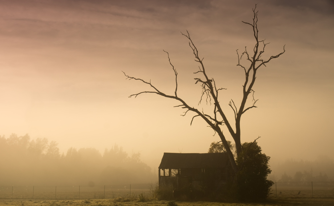 run-down-farm-house-early-morning-mist